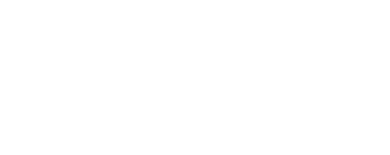 Michaela Merk / Merk Vision